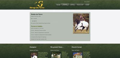 -creation-web-vavres-equestre